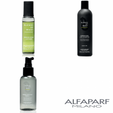 Kit energizant anti-cadere pentru barbati - Blends of Many - Alfaparf Milano - 3 produse cu 25% discount